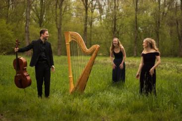 Afbeelding behorende bij Concert in de kerk van Rozendaal